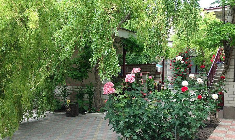 Кобзарь отдых летом в Геническе 2019